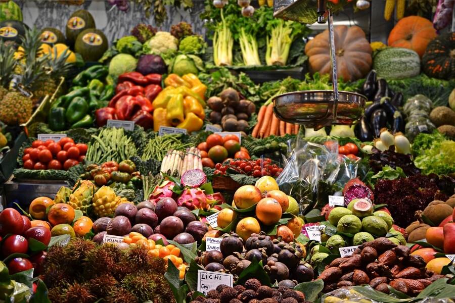 Auswahl an Obst und Gemuese mit Antioxidantien und Polyphenolen